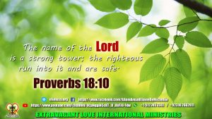 Proverbs 18 10 ELIM 04