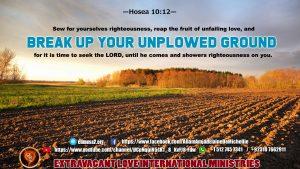 Hosea 10 12